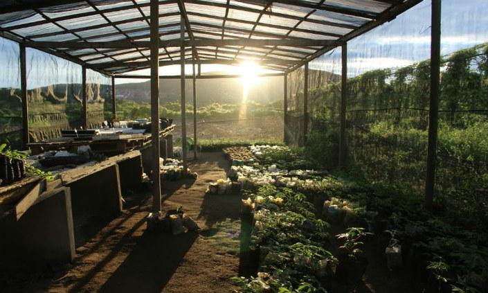 CGA seleciona voluntários para projeto de extensão em ecologia
