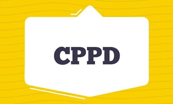 Campus Palmares divulga edital para eleição da CPPD